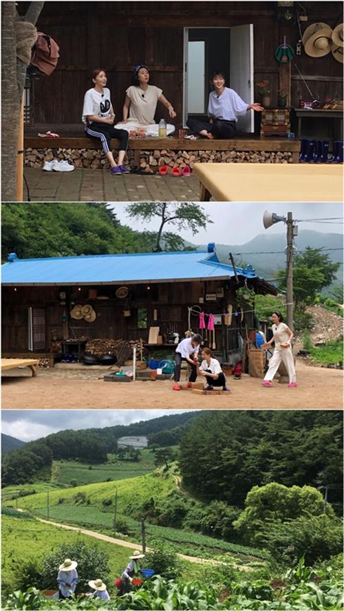 《三时三餐》女生篇确定8月9日首播 新鲜组合引人期待