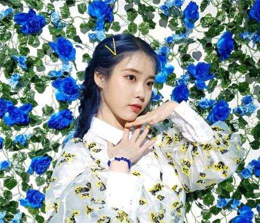 IU连续两天席卷音源排行榜 收录曲全部入榜实现霸榜